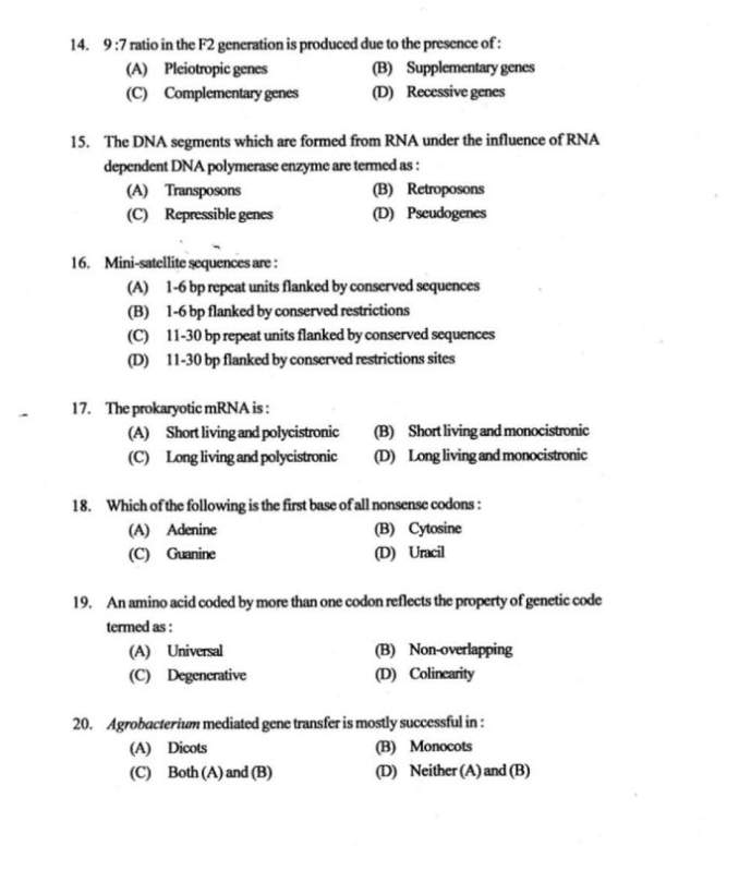 essay of microbiology exam Microbiology study guide –exam 4 (final) this is a list of the types of things you should be able to describe or explain in your own words for each chapter you are still sample essay questions: 1 describe and illustrate the typical stages of an infectious disease 2 compare and contrast endotoxin and a typical exotoxin.