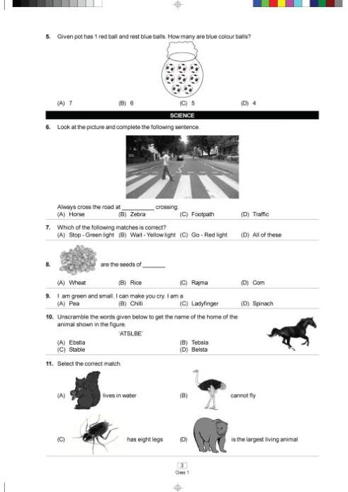 international mathematics olympiad work book class 10